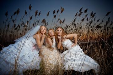 Evening brides