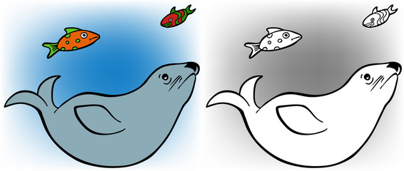 Seal and Fish