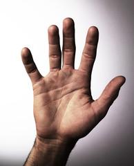 focus sur paume d'une main droite