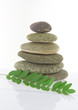 concept pebble stack with leaf