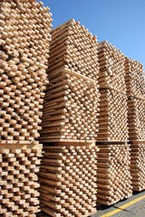 pile of wood ready for processing, sky background