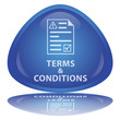 """Terms & Conditions"" Button"