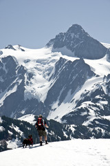 Snowshoer and his dog and Mt. Shuksan