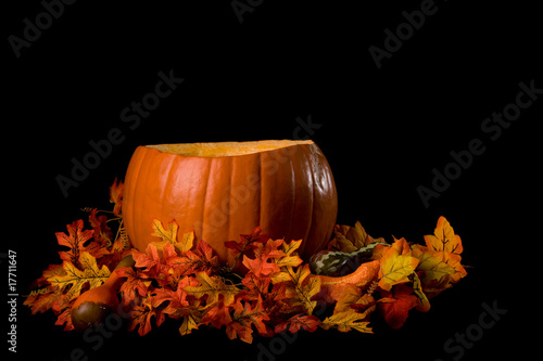 Large Pumpkin Isolated on Black