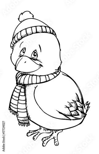 Vogel, Winter, überwintern, Schal, Mütze