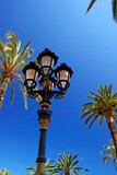 Old style street light among palm trees.