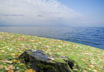 Autumn beach or autumn over the Earth.