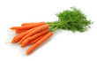 Carrots isolated on the white background