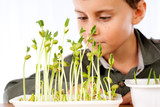 Schoolboy at a practical biology lesson poster