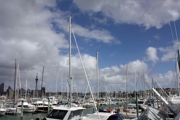 Marina with Auckland SkyTower