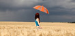Girl with umbrella at field. Panoramic photo.