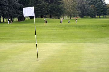 bandierina e golfisti