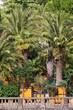 Palmengarten Bad Pyrmont