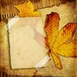 vintage autumn photo-album