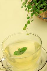 herb tea and houseplant