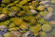 ripple pond - 17833026