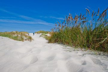 Couple walking in the sand dunes with beach grass