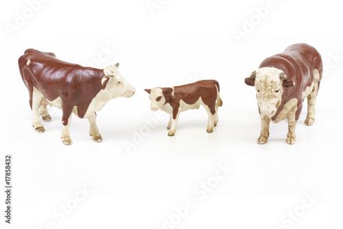 Fotobehang Buffel bovins miniature