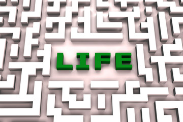 Life in a maze - 3D image