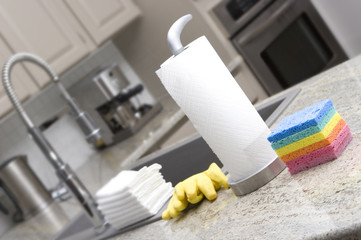 sponges, paper towels, gloves, cloths in kitchen for housework