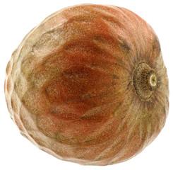 coeur boeuf  Annona reticulata