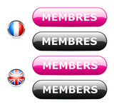 icône internet membres / members poster