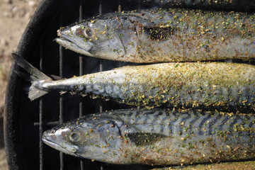 grilled fishes background