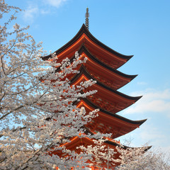Pagoda With Cherry Trees