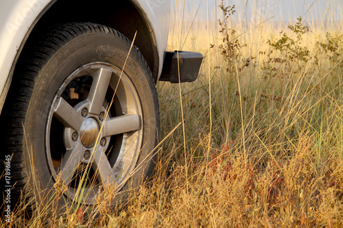 Traveling by jeep. Dry grass under the wheels