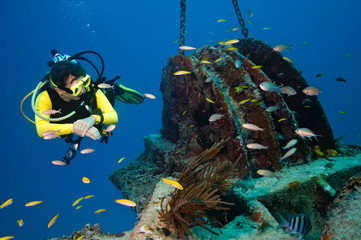 Female diver explores wreck