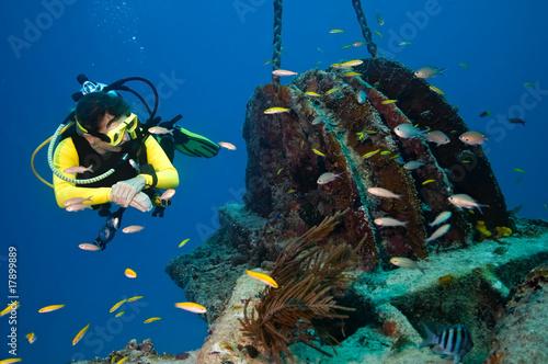 Female diver explores wreck - 17899889
