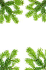 Christmas background with spruce tree frame