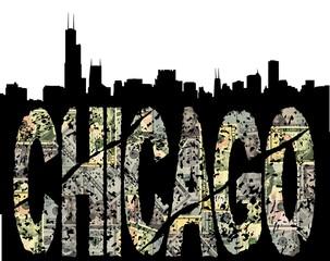 Chicago grunge dollar with skyline