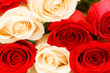 Background of the red and white roses