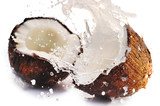 Fototapeta klimat - kokos - Owoc
