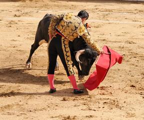 Matador &  Bull on the Ground