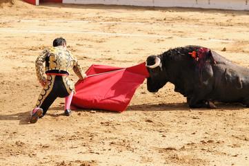 Matador & Bull on Ground