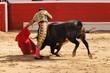 Leinwanddruck Bild - Matador & Bull