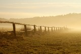Morning mist hovering over the field at sunrise poster