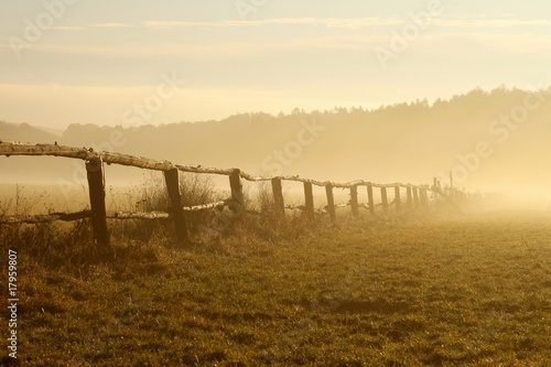 Morning mist hovering over the field at sunrise © joda