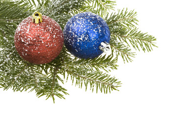 Branch nature spruce and Christmas Balls, isolated on white.
