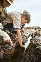 Ranger and children looking at tide pool