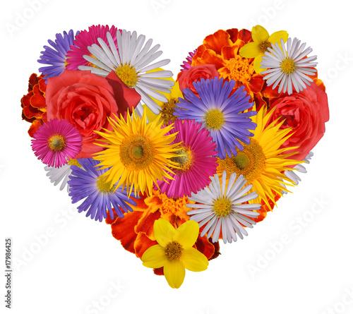 Srce- slike - Page 9 400_F_17986425_t9Sk6vnnhxx0tO0VdFRVYldV79Sy13Ok