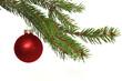 rote Weihnachtskugel am Christbaum