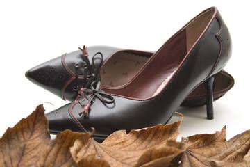 Schuhe auf Blätter