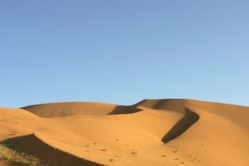 Dune del Deserto #5