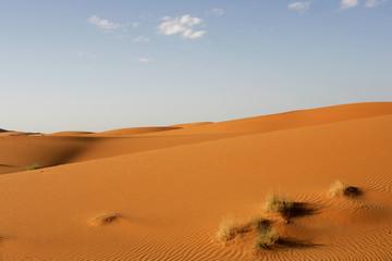 Dune del Deserto #6