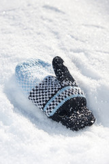 Mitten in the snow