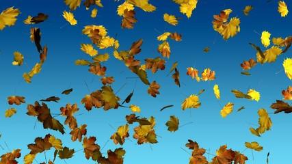 Herbst, falling leaves 1080
