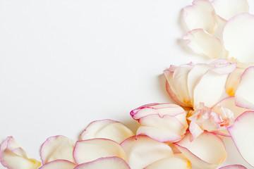 White roses's frame